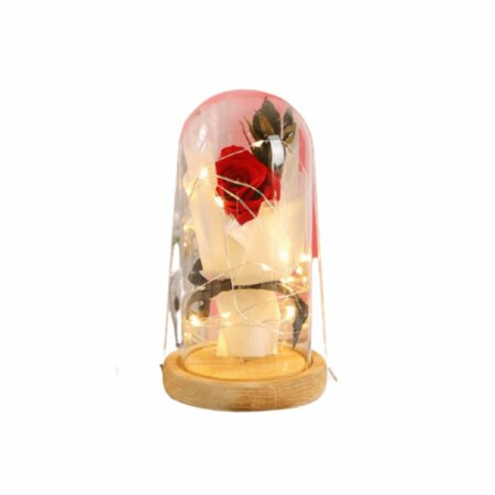 forever rose preserved in glass - red